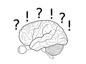 my_brain